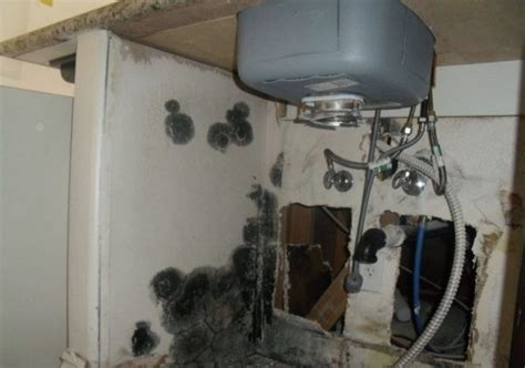 black mold kitchen sink don t want any mold your sink do these steps 7894