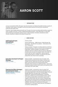 Job Resumes Samples Self Employed Auto Entrepreneur Resume Example Resume