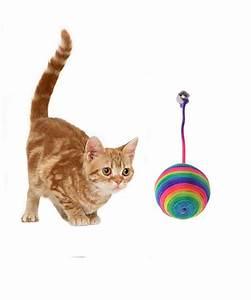 Balle Pour Chat : balles en sisal pour chat balle clochette chaton livraison gratuite ~ Teatrodelosmanantiales.com Idées de Décoration