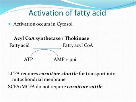Fatty Acid Oxidation ( Beta , Alpha Omega And Peroxisomal