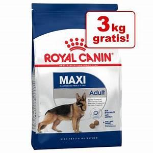 Royal Canin Maxi Adult : cibo secco per cani royal canin maxi adult zooplus ~ Eleganceandgraceweddings.com Haus und Dekorationen
