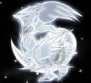 reshiram the yang pokemon by Elsdrake on DeviantArt