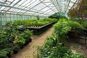Garden Nursery WSHGNET BLOG Gardening With Peg — How To