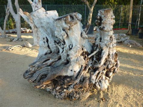 bois flotte a vendre banc en bois flotte a vendre table de lit
