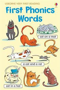 21 best images about hhh cvc 3 letter words decodable With 3 letter word books