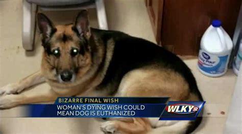 euthanized dog