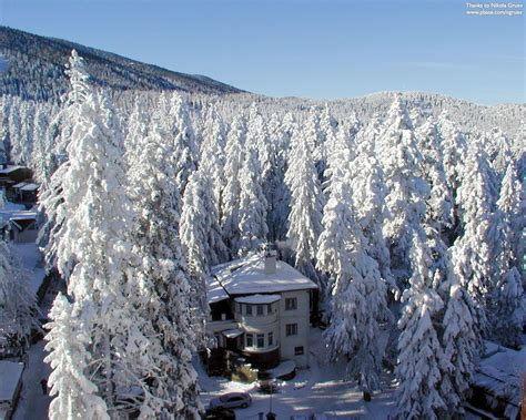 Good Nursery Guide by Borovets Borovec Bulgaria Travel Guide Tourist