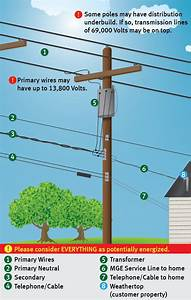 Tree Pruning - Madison Gas And Electric