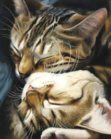 cat painting great cat paintings by celia pike 20 pics izismile