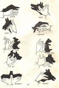 Manual Of Hand Shadow Puppetry