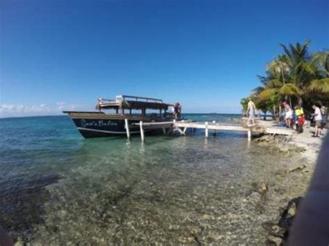 Glass Bottom Boat Tours Belize by Sea N Belize Glass Bottom Boat Excursions Placencia