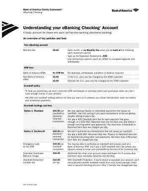 bank of america bank statement template bank america fill printable fillable blank pdffiller