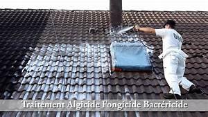 Tarif Nettoyage Toiture Hydrofuge : nettoyage toiture tuile tarif solive bois guehenno online ~ Melissatoandfro.com Idées de Décoration