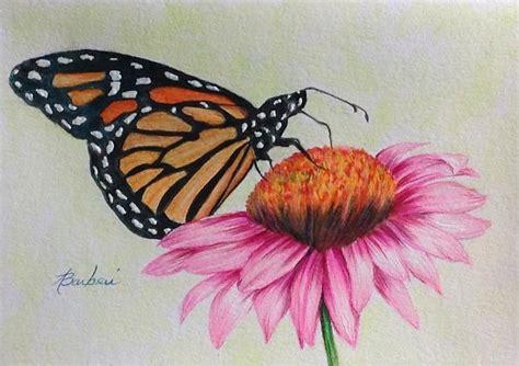 20+ Butterfly Drawings, Art Ideas