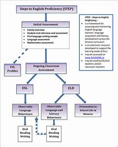 Step Flow Chart  U2013 Overview