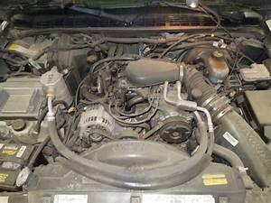 2001 Chevy S10 Blazer A  C Heater Blower Motor 2161685