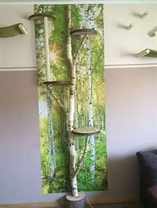 Deko äste Birke : sch ne deko birkenst mme birken rundlinge katzenbaum ~ Michelbontemps.com Haus und Dekorationen