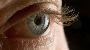 Animal Trials Show Promise for Treating Eye Cancer - Everyday Health Eye Cancer