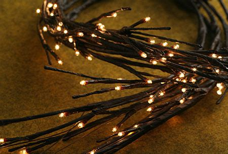 electric lighted willow garland  bulbs  feet buy
