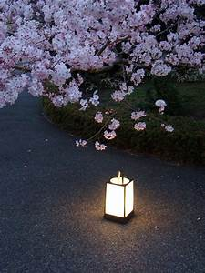 Lighting Up the Japanese Garden At Night – Moments of Ma