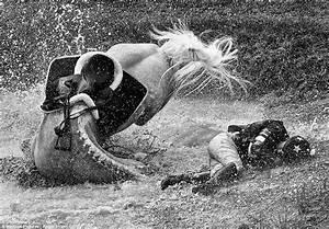 Award-winning photographs for Society of International ...