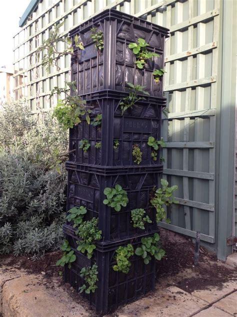 Vertical Gardening Strawberries by 12 Diy Vertical Strawberry Garden Ideas Garden