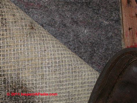 carpet padding guide  asbestos mold odor problems
