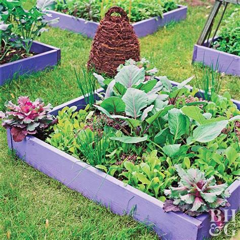 small space vegetable garden plan ideas