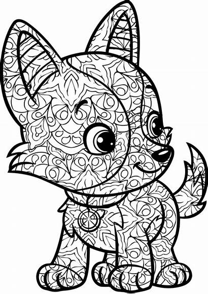 Coloring Pages Create Screen Books Colors Duathlongijon