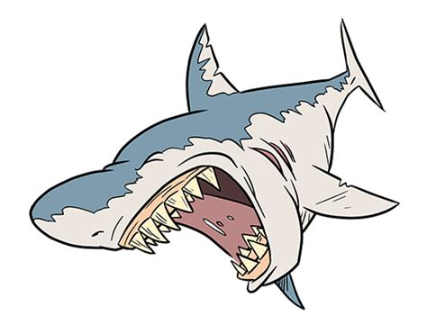draw  cartoon shark step  step clipartsco