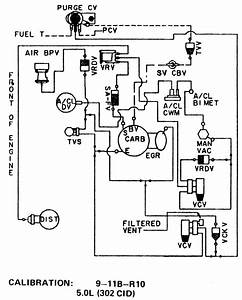 1978 Ford Vacuum Diagram  1978  Free Engine Image For User