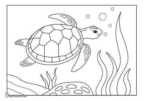 animal coloring page sea turtle