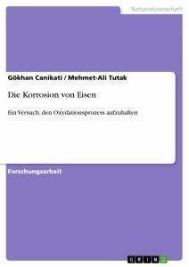 Korrosion Von Eisen : die korrosion von eisen hausarbeiten publizieren ~ A.2002-acura-tl-radio.info Haus und Dekorationen