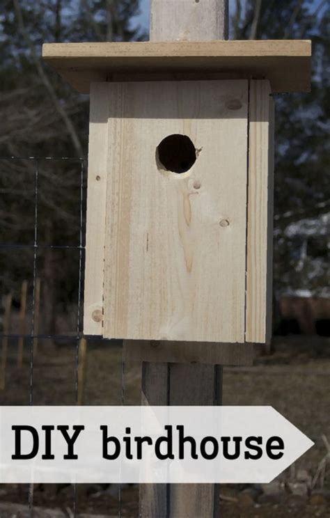 diy bird houses    feathered friends