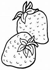 Strawberries Coloring Strawberries1 sketch template