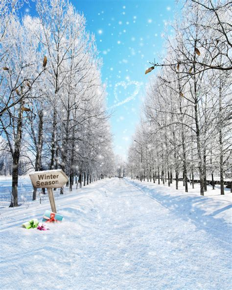 Winter Wonderland Snow Trees Backgrounds For Sale Vinyl Cloth High Quality Computer Printed