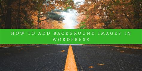 add  background image  wordpress scott deluzio
