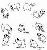 Pug Pugs Poop Coloring Cycle Printable Bah Humpug Pooping Dog Drawing Times Drawings Sunny Getdrawings Getcolorings Rosy Few Adults Imgur sketch template