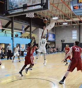 Road teams roll past men's basketball again – Point Park Globe