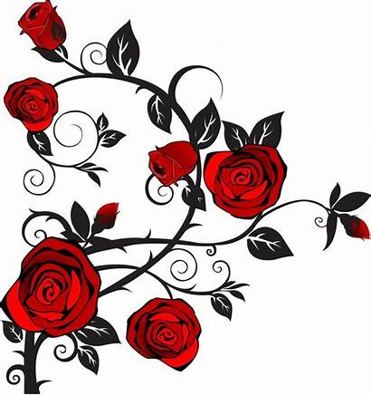 Roses Clip Rose Clipart Clipartix