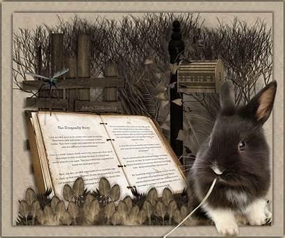 Dragonfly Story Gifs Livre Rabbit Bunny Lovethispic