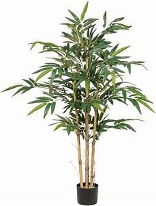 Bambus Als Zimmerpflanze : k nstliche zimmerpflanze bambus online kaufen otto ~ Eleganceandgraceweddings.com Haus und Dekorationen