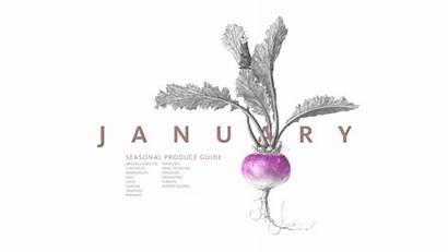 January Produce Seasonal Guide