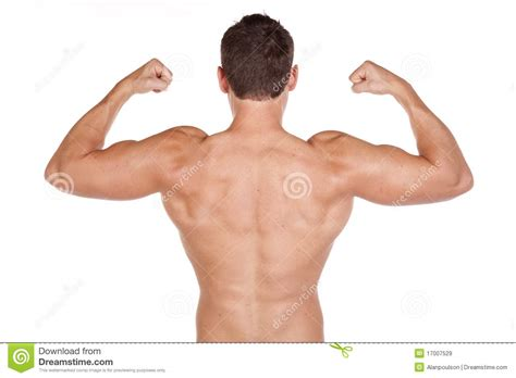 muscles royalty  stock images image
