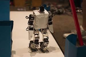 Dog Designs Robotis Bioloid Wikipedia