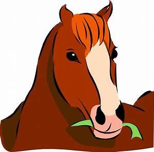 Cute Horse Head Cartoon - ClipArt Best - ClipArt Best