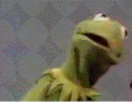 Kermit The Frog GIFs - Find & Share on GIPHY