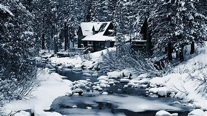 Forest Winter Lonely Wallpapers Nature Snow Desktop