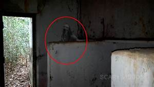 Ghostly Man Caught On Camera | Real Haunting Place | Real ...