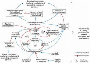 Fig  5  Causal Loop Diagram Summarizing The Dynamics Of